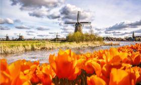 打卡风车与郁金香的故乡——阿姆斯特丹