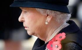 不懂就问!为什么每年11月,英国人胸前都会佩戴一朵小红花?